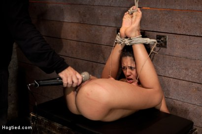 Photo number 15 from Long legs, and huge nipples, suffers foot caning, finger fucking 'til squirting. Agony & Ecstasy ! shot for Hogtied on Kink.com. Featuring Lyla Storm in hardcore BDSM & Fetish porn.