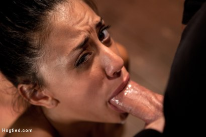 Photo number 10 from Severely arched, nipples stretched, vibrator locked into place, brutal deep throat sucking & orgasms shot for Hogtied on Kink.com. Featuring Lyla Storm in hardcore BDSM & Fetish porn.
