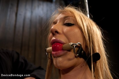 Photo number 4 from Squirt Alert! From the ass that keeps on taking shot for Device Bondage on Kink.com. Featuring Amy Brooke in hardcore BDSM & Fetish porn.