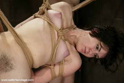 Photo number 1 from trixie kitten shot for Water Bondage on Kink.com. Featuring trixie kitten in hardcore BDSM & Fetish porn.