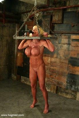 Photo number 12 from Utah Sweet shot for Hogtied on Kink.com. Featuring Utah Sweet in hardcore BDSM & Fetish porn.