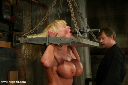 Photo number 10 from Utah Sweet shot for Hogtied on Kink.com. Featuring Utah Sweet in hardcore BDSM & Fetish porn.