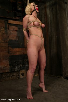 Photo number 13 from Crystal Frost shot for Hogtied on Kink.com. Featuring Crystal Frost in hardcore BDSM & Fetish porn.