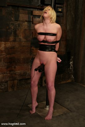 Photo number 5 from Crystal Frost shot for Hogtied on Kink.com. Featuring Crystal Frost in hardcore BDSM & Fetish porn.