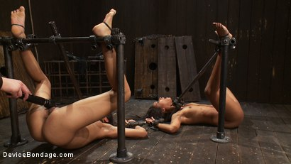 Photo number 10 from The cries of the cumming whores shot for Device Bondage on Kink.com. Featuring Skin Diamond and Lyla Storm in hardcore BDSM & Fetish porn.