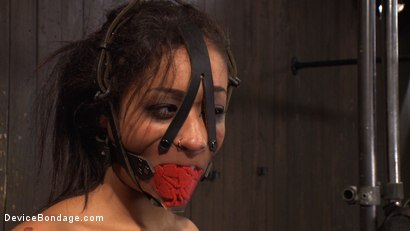 Photo number 12 from Devastating orgasms destroy the insatiable  shot for Device Bondage on Kink.com. Featuring Skin Diamond and Lyla Storm in hardcore BDSM & Fetish porn.