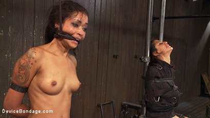 Photo number 8 from Devastating orgasms destroy the insatiable  shot for Device Bondage on Kink.com. Featuring Skin Diamond and Lyla Storm in hardcore BDSM & Fetish porn.