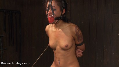 Photo number 5 from Devastating orgasms destroy the insatiable  shot for Device Bondage on Kink.com. Featuring Skin Diamond and Lyla Storm in hardcore BDSM & Fetish porn.