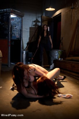 Photo number 6 from Two Bad Girls, One Badass Bitch! shot for Wired Pussy on Kink.com. Featuring Rozen Debowe, Akira Raine and Francesca Le in hardcore BDSM & Fetish porn.