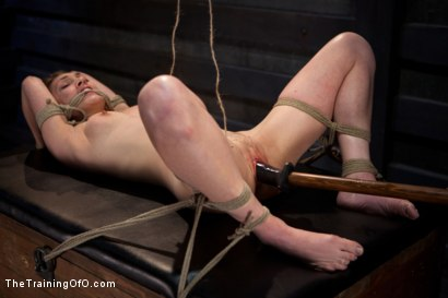 Photo number 8 from Training Lilly LaBeau<br>Day 1-Evaluating the Slave shot for The Training Of O on Kink.com. Featuring Lily LaBeau in hardcore BDSM & Fetish porn.