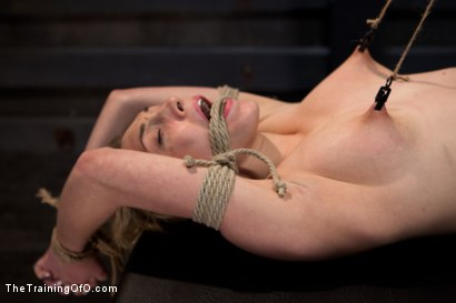 Photo number 6 from Training Lilly LaBeau<br>Day 1-Evaluating the Slave shot for The Training Of O on Kink.com. Featuring Lily LaBeau in hardcore BDSM & Fetish porn.