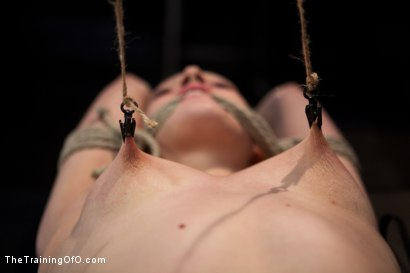 Photo number 9 from Training Lilly LaBeau<br>Day 1-Evaluating the Slave shot for The Training Of O on Kink.com. Featuring Lily LaBeau in hardcore BDSM & Fetish porn.