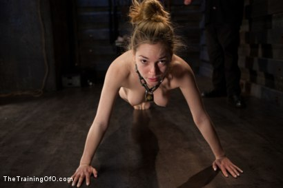 Photo number 3 from Training Lily LaBeau Day 4<br>Early Invasion, Exercise, and Bastinado shot for The Training Of O on Kink.com. Featuring Lily LaBeau in hardcore BDSM & Fetish porn.