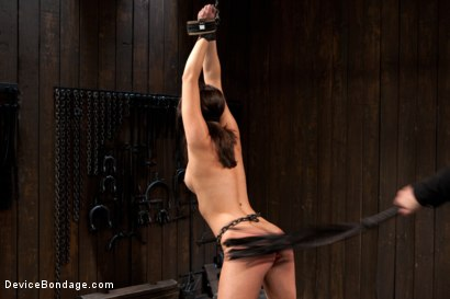 Photo number 3 from N00b getz PWND - first timer suffers intense bondage  shot for Device Bondage on Kink.com. Featuring Casey Calvert in hardcore BDSM & Fetish porn.