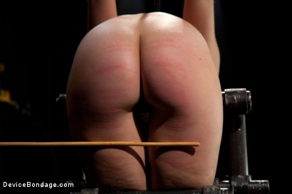 Photo number 6 from Fresh innocent girl bound and made to cum, confused between pain and pleasure shot for Device Bondage on Kink.com. Featuring Remy LaCroix in hardcore BDSM & Fetish porn.