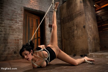 Photo number 14 from Sexy Cougar is bound, and brutally skull fucked  Hair tied on the floor made to cum like a slut! shot for Hogtied on Kink.com. Featuring Beretta James in hardcore BDSM & Fetish porn.