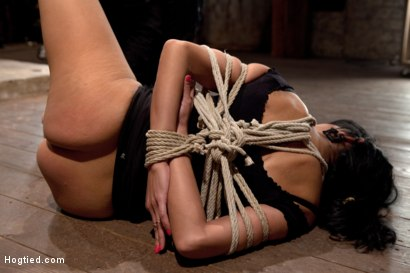 Photo number 7 from Sexy Cougar is bound, and brutally skull fucked<br> Hair tied on the floor made to cum like a slut! shot for Hogtied on Kink.com. Featuring Beretta James in hardcore BDSM & Fetish porn.