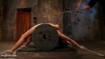 Photo number 14 from Sexy brunette experiences nipple torture, brutal crotch rope and extreme bondage. shot for Hogtied on Kink.com. Featuring Beretta James in hardcore BDSM & Fetish porn.