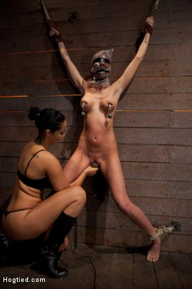 Photo number 12 from Scene 4/4 of Nov's show: Brutal gag, devastating orgasms, a crotch rope from hell! Total suffering! shot for Hogtied on Kink.com. Featuring Isis Love and Kaylee Hilton in hardcore BDSM & Fetish porn.