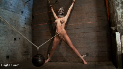 Scene 4/4 of Nov's show: Brutal gag, devastating orgasms, a crotch rope from hell! Total suffering!