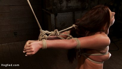 Photo number 1 from Cute 20yr old has elbows tied tight & strappado'd, hair tied back made to cum while totally helpless shot for Hogtied on Kink.com. Featuring Hope Howell in hardcore BDSM & Fetish porn.