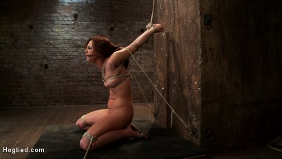 Photo number 14 from Cute 20yr old has elbows tied tight & strappado'd, hair tied back made to cum while totally helpless shot for Hogtied on Kink.com. Featuring Hope Howell in hardcore BDSM & Fetish porn.