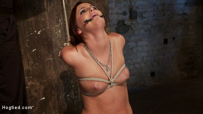 Photo number 9 from Cute 20yr old has elbows tied tight & strappado'd, hair tied back made to cum while totally helpless shot for Hogtied on Kink.com. Featuring Hope Howell in hardcore BDSM & Fetish porn.