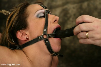 Photo number 8 from Sasha Sparks shot for Hogtied on Kink.com. Featuring Sasha Sparks in hardcore BDSM & Fetish porn.