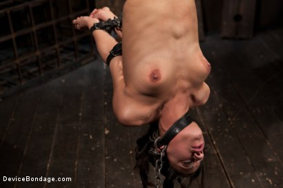 Photo number 12 from Bountiful Orgasms with Brutal Bondage shot for Device Bondage on Kink.com. Featuring Lyla Storm in hardcore BDSM & Fetish porn.