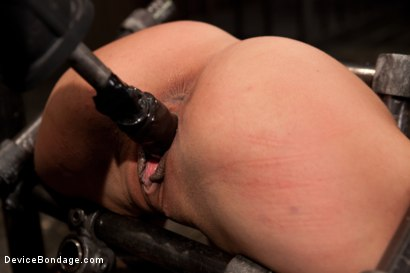 Photo number 6 from Bountiful Orgasms with Brutal Bondage shot for Device Bondage on Kink.com. Featuring Lyla Storm in hardcore BDSM & Fetish porn.