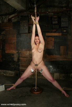 Photo number 9 from Venus May shot for Wired Pussy on Kink.com. Featuring Venus May in hardcore BDSM & Fetish porn.