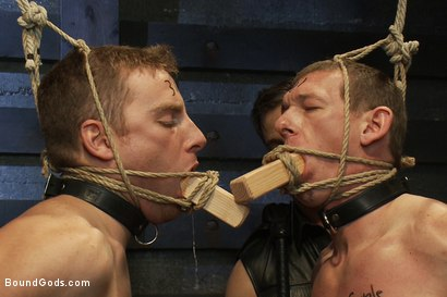 Photo number 4 from Please let me take his pain, Sir shot for Bound Gods on Kink.com. Featuring Van Darkholme, Master Avery, Sebastian Keys and Kieron Ryan in hardcore BDSM & Fetish porn.
