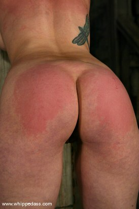 Photo number 7 from Kym Wilde and Venus May shot for Whipped Ass on Kink.com. Featuring Venus May and Kym Wilde in hardcore BDSM & Fetish porn.