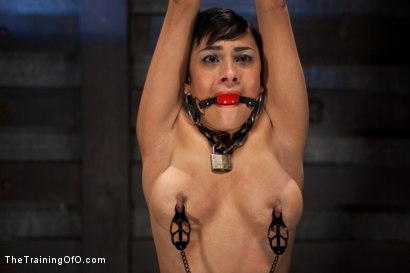 Photo number 5 from Day 5 for Beretta. Will she be the perfect slave? shot for The Training Of O on Kink.com. Featuring The Pope and Beretta James in hardcore BDSM & Fetish porn.