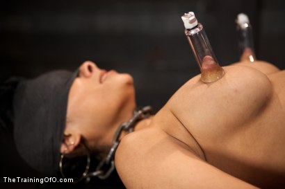 Photo number 12 from Day 5 for Beretta. Will she be the perfect slave? shot for The Training Of O on Kink.com. Featuring The Pope and Beretta James in hardcore BDSM & Fetish porn.