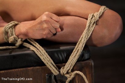 Photo number 13 from Day 5 for Beretta. Will she be the perfect slave? shot for The Training Of O on Kink.com. Featuring The Pope and Beretta James in hardcore BDSM & Fetish porn.