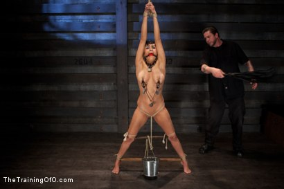 Photo number 6 from Day 5 for Beretta. Will she be the perfect slave? shot for The Training Of O on Kink.com. Featuring The Pope and Beretta James in hardcore BDSM & Fetish porn.