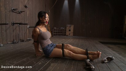 Photo number 2 from Lactating Titties of the Prancing Petite Tia shot for Device Bondage on Kink.com. Featuring Tia Ling and Isis Love in hardcore BDSM & Fetish porn.