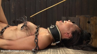 Photo number 12 from 8 Fingers in the Ass = Anal Whore shot for Device Bondage on Kink.com. Featuring Tia Ling and Isis Love in hardcore BDSM & Fetish porn.
