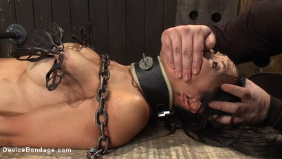 Photo number 7 from 8 Fingers in the Ass = Anal Whore shot for Device Bondage on Kink.com. Featuring Tia Ling and Isis Love in hardcore BDSM & Fetish porn.