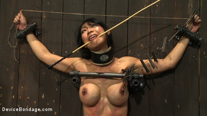 Photo number 14 from Tiny Tia Takes Tenacious Torment  shot for Device Bondage on Kink.com. Featuring Tia Ling and Isis Love in hardcore BDSM & Fetish porn.