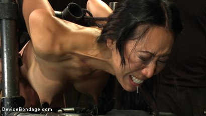 Photo number 7 from Every last orgasm will be had - a bondage crusade shot for devicebondage on Kink.com. Featuring Tia Ling and Isis Love in hardcore BDSM & Fetish porn.