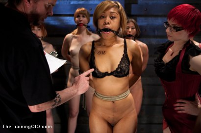 Photo number 3 from Lesbian 5 Slave Training Intake<br>Featured Trainer Claire Adams  shot for The Training Of O on Kink.com. Featuring Ariel X, Claire Adams, Bryn Blayne, Yasmine de Leon, Mackenzie Lux and Mallory Mallone in hardcore BDSM & Fetish porn.