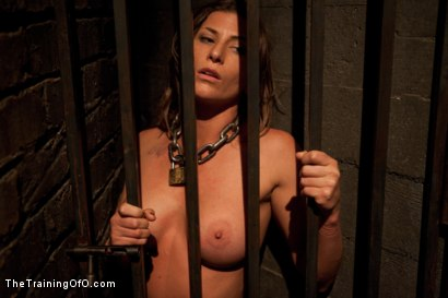 Photo number 7 from Lesbian Slave Training Ariel X<br>Featured Trainer-Aiden Starr shot for The Training Of O on Kink.com. Featuring Ariel X and Aiden Starr in hardcore BDSM & Fetish porn.