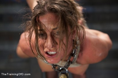 Photo number 8 from Lesbian Slave Training Ariel X<br>Featured Trainer Bobbi Starr shot for The Training Of O on Kink.com. Featuring Ariel X and Bobbi Starr in hardcore BDSM & Fetish porn.