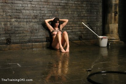 Photo number 15 from Classic Shoot- Where it all Began<br>The Training of Bobbi Starr, Day One shot for The Training Of O on Kink.com. Featuring Bobbi Starr in hardcore BDSM & Fetish porn.