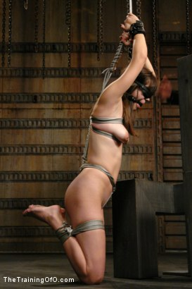 Photo number 6 from Classic Shoot- Where it all Began   The Training of Bobbi Starr, Day One shot for The Training Of O on Kink.com. Featuring Bobbi Starr in hardcore BDSM & Fetish porn.