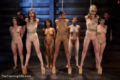 Photo number 3 from Seven Slave Intake<br>Extreme Bondage, Exhausting Exercise, & Overwhelming Orgasms Expose the Weak shot for The Training Of O on Kink.com. Featuring Beretta James, Emii Ebi, Oliver Hyde, Kay Kardia, Pixie  , Melanie Lucci, Sahara Rain and Maestro Stefanos in hardcore BDSM & Fetish porn.
