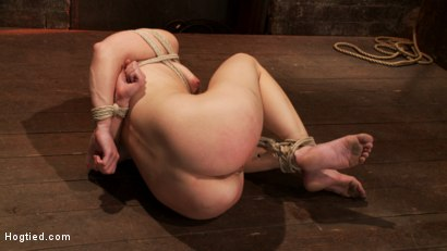 Photo number 3 from Hot blond's nipples are abuse, feet tickled, & pussy fucked with a stick, made to cum like a whore. shot for Hogtied on Kink.com. Featuring Ash Hollywood in hardcore BDSM & Fetish porn.