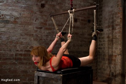 Photo number 1 from Mallory Malone Back For More! shot for Hogtied on Kink.com. Featuring Mallory Mallone in hardcore BDSM & Fetish porn.